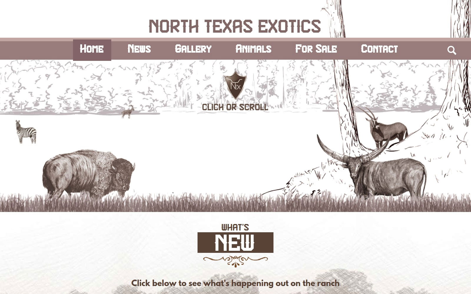 web-design-and-development-example-project-north-texas-exotics-cropped